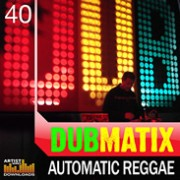 dubmatix - automatic reggae - loopmasters - sound pack - construction - samples - stems