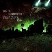 toast face imaginary picture joshua casper remix cover art